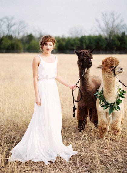 Alpaca Farm wedding inspiration | Wedding & Party Ideas | 100 Layer Cake