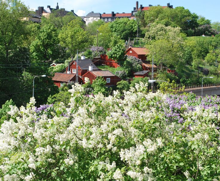 sweden in summer....