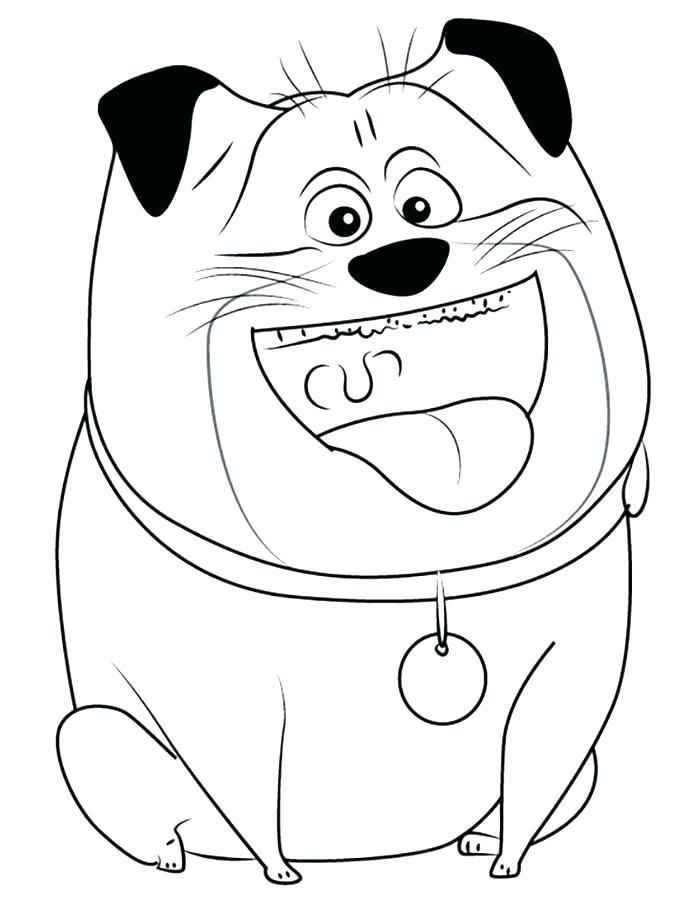 To Print Out The Secret Life Of Pets Coloring Pages Best Coloring