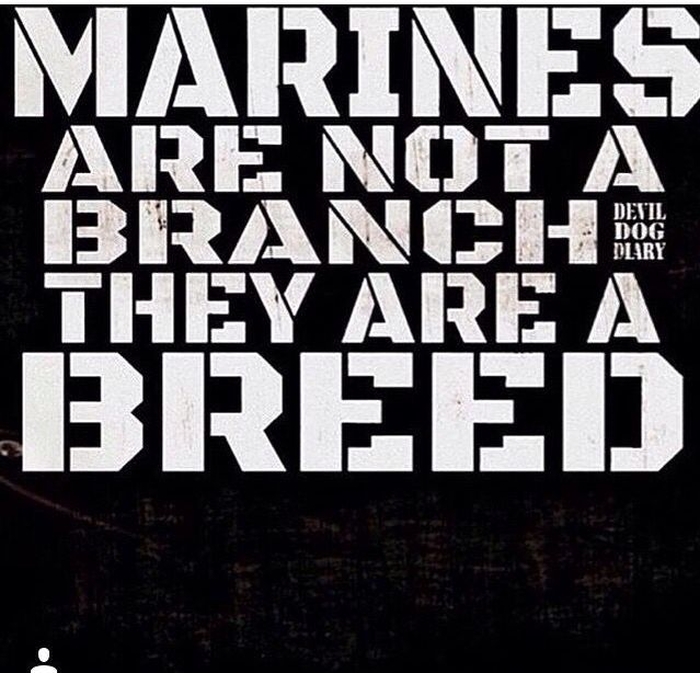 Best Marine Quotes And Sayings: 262 Best My Sons Are Marines Images On Pinterest