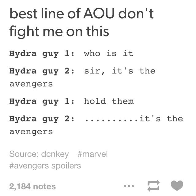 "Best line of AOU: Hydra guy 1: ""Who is it?"" Hydra guy 2: ""Sir, it's the Avengers."" ""Hold them."" ""......It's the Avengers."""