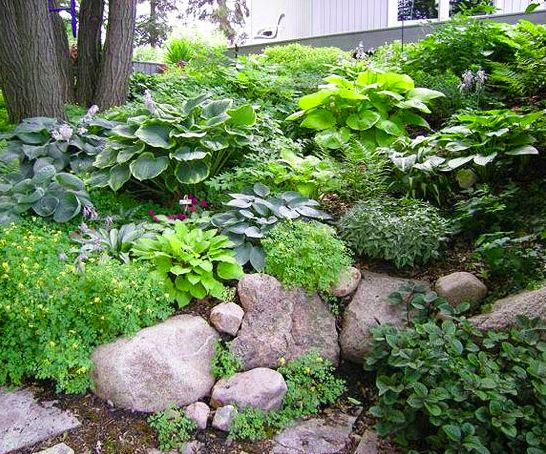 Landscaping Rocks Puyallup : Garden on hill sloped yard and landscaping a