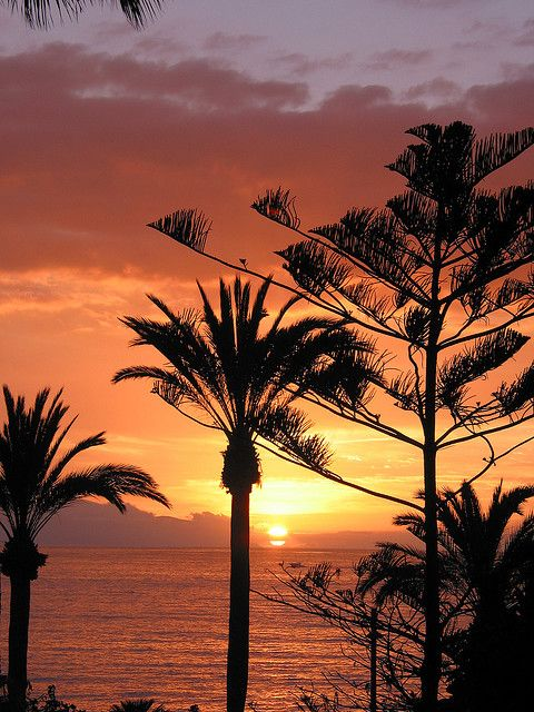 Canary Islands. I want my life to be in a place like this.