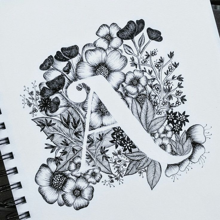 Typography, calligraphy, flowers, alphabet, A                              …