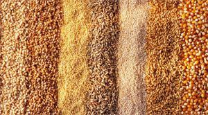 get-the-gloss-amelia-freer-nutrition-plan-week-3-grains.jpg