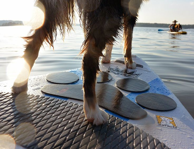Introducing the Pup Deck! The new Pup Deck SUP traction pad for dogs gives grip to your board right where your dog sits, on the front of the board. You'll find Fido even happier to go paddling with yo