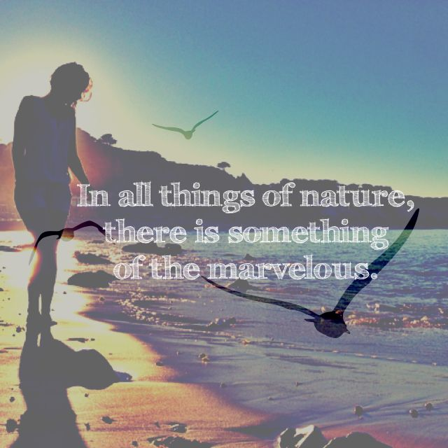 Quote nature rules
