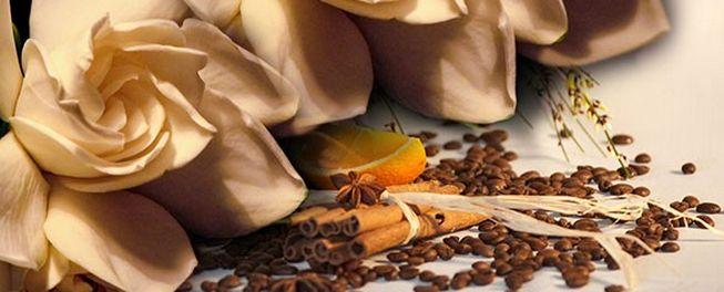 ASTUCES POUR DÉSODORISER NATURELLEMENT SA MAISON. Des mauvaises odeurs peuvent envahir au quotidien votre maison, voici quelques règles de base très simples pour éviter cela. Lire la suite : http://www.astussima.com/astuces-desodoriser-maison.html