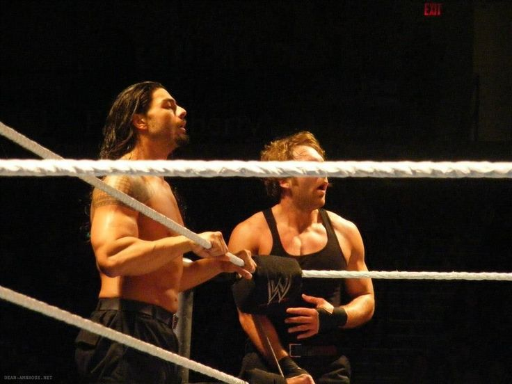 The Shield [Roman Reigns and Dean Ambrose]