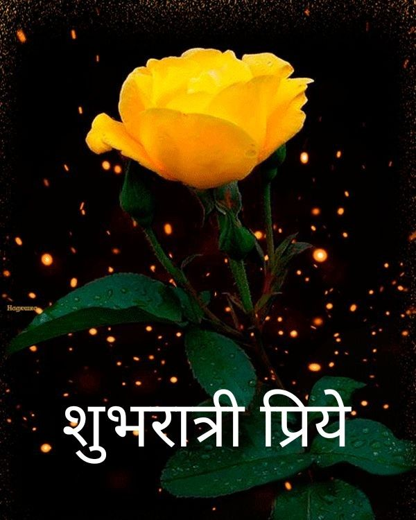 Shubh Ratri Marathi Image Marathi Images Good Night Wishes