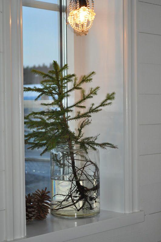 Christmas | Xmas | Jul | Noel. Natural Decoration. Tree. Evergreen