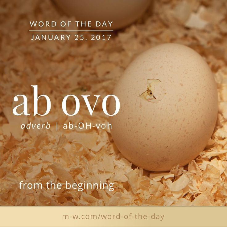 ab ovo.  #merriamwebster #dictionary #language