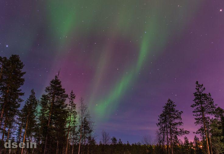 Endlich wieder Nordlichter fotografieren. In 5 Schritten.