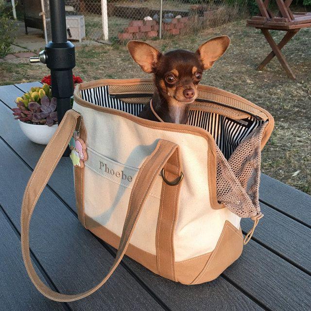 Putzi Bag Black Edition Pet Carrier En 2020 Porta Mascotas Transportador De Perro Mochilas Para Perros