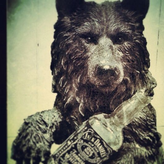 Resident house Bear 'Dave'