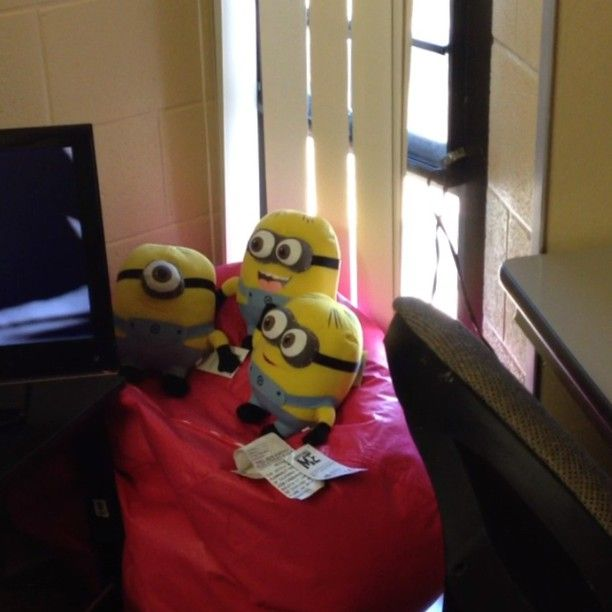 Love this!! Too cute. Minion pillows :) College bound! Pinterest Minion pillow, My minion ...