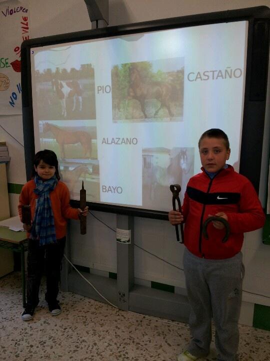 Javi Lòpez y Nico nos dan una conferencia sobre los caballos y nos traen las herramientas necesarias para herrar.