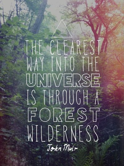 John Muir Art Print FREE SHIPPING THIS WEEKEND WORLDWIDE ON SOCIETY6 The clearest way into the Universe is through a forest wilderness.