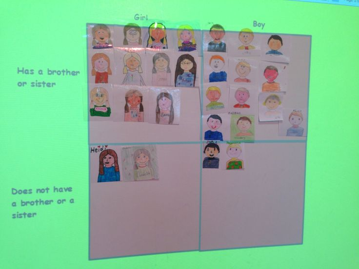 Carroll diagrams on ourselves -before moving to numbers
