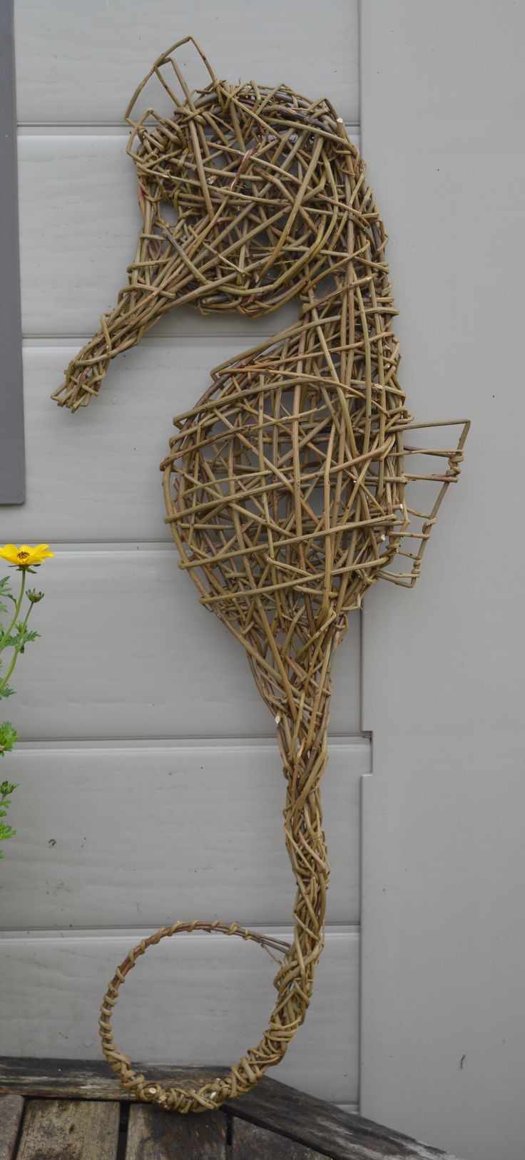 Willow seahorse by Ann Catherall