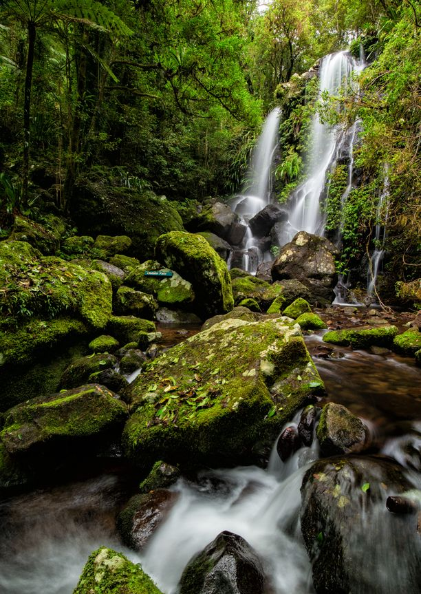 Chalahn Falls is known as being one of the most beautiful in Lamington National Park, Queensland, Australia