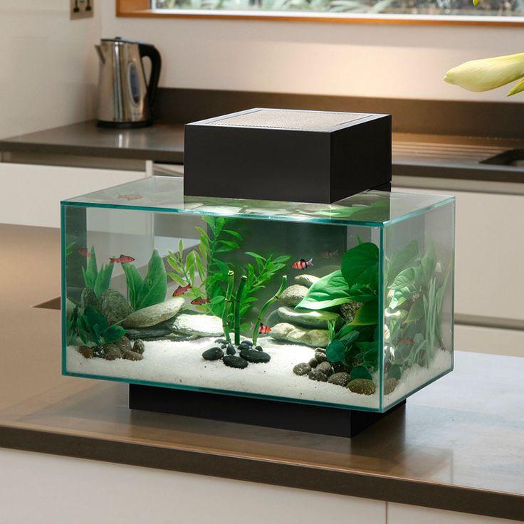 Fluval Edge Aquarium | Home > Aquarium Supplies > Aquarium Systems > Full Aquarium Set-Up