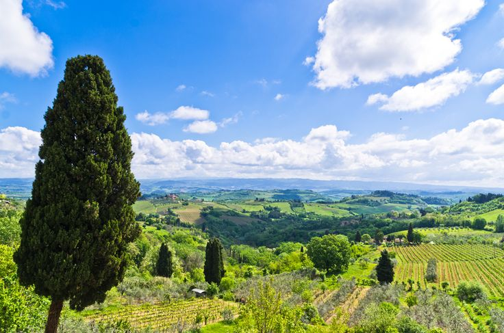 PISA, SAN GIMIGNANO & SIENA (departure from Florence): full day tour to #Pisa, San Gimignano and #Siena. A special day in Tuscany! View offer: http://www.sunnytuscanytours.com/gestione/view.php3?DB1_lingua=ENG&DB1_codice=1496&pagout=scheda_ENG.html&DB2_tag=Daily%20Tours