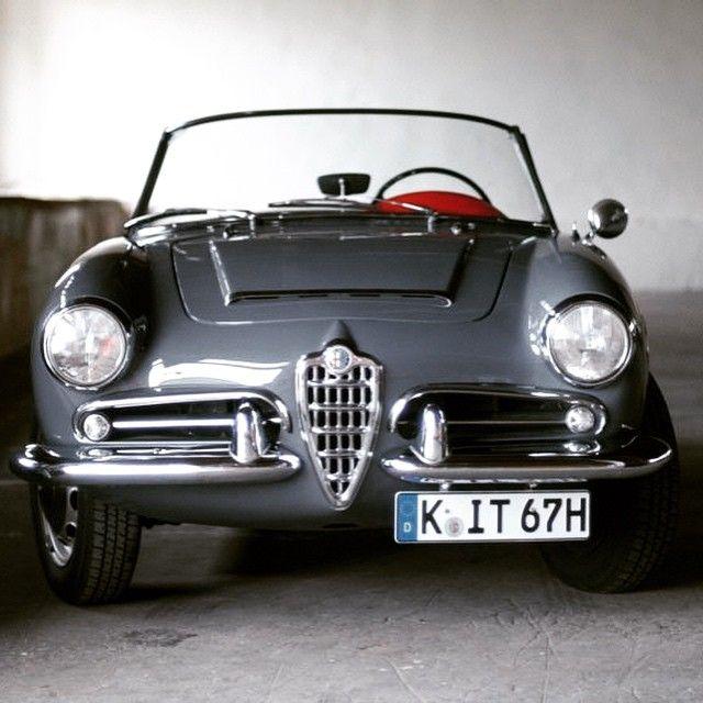 Best 25+ Alfa Romeo Giulietta Spider Ideas On Pinterest