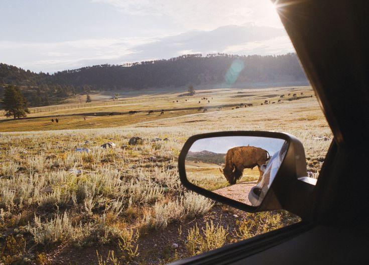 : Norris Webb, Rearview Mirror, Alex Webb, Nature, Art Photography, Wind Caves, South Dakota, Rebecca Norris, Alex O'Loughlin
