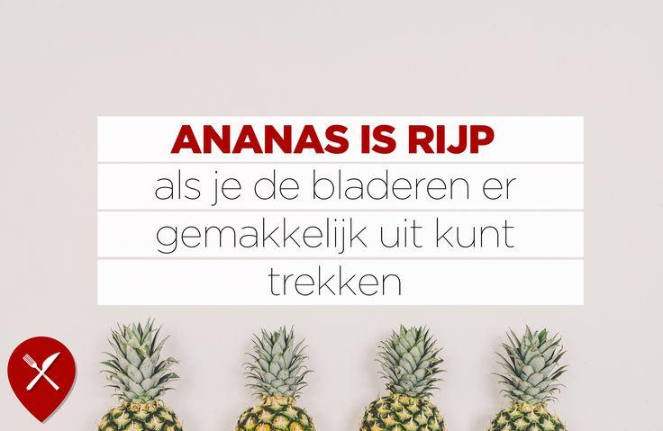 Wist je dat ananas beschermt tegen verkoudheid? Dat komt door de voedingsstoffen vitamine C en bromelaïne. Goede reden om een ananas door je yoghurt te roeren in de ochtend. Check alleen wel eerst even of de ananas rijp is.