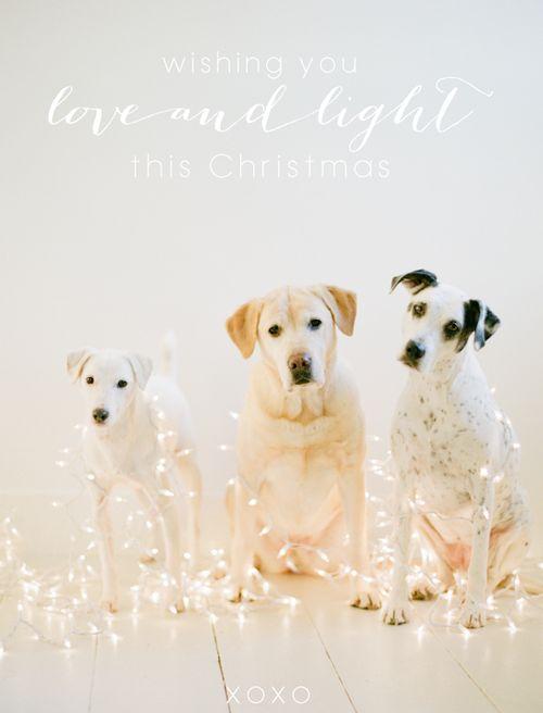 Wishing you love and light this Christmas <3