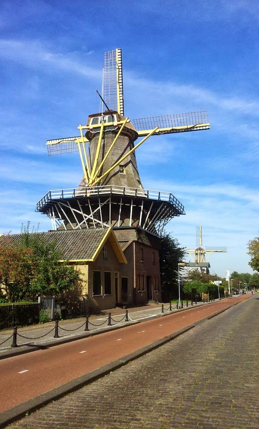 Kralingse Plas/Rotterdam