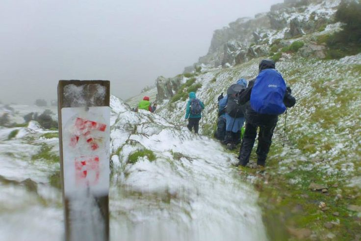 End-to-End 'Minus 1' group experienced snow on the summit of Mt Bryan yesterday. At 936 metres Mt Bryan, north of Burra, is the highest peak in the Mt Lofty Ranges and occasionally sees a snow fall.  https://www.facebook.com/photo.php?fbid=768591259851705