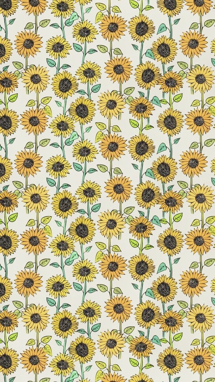 Shades Of Yellow Color Names For Your Inspiration Sunflower