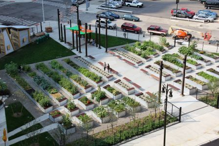 Lafayette Greens - an urban garden / agriculture by Beth Hagenbuch of Kenneth Weikal Landscape Architecture in Detroit, USA.