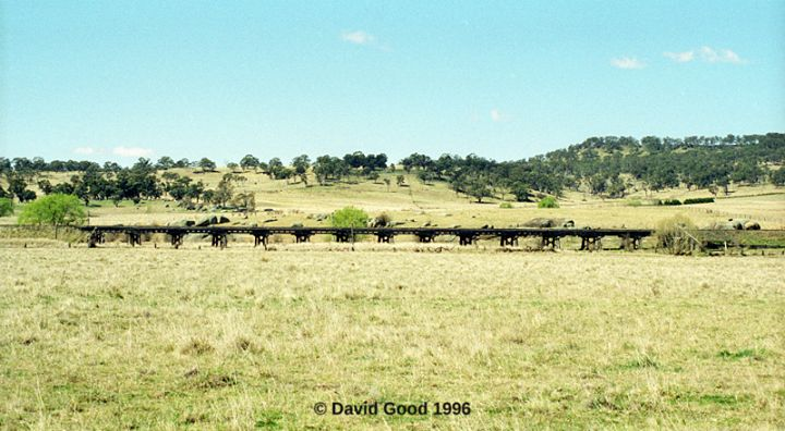 The Whitton era ballast top timber bridge over the Beardy River, between Glencoe and Stonehenge on the Great Northern Railway. This is the second of only two significant timber underbridge structures between Armidale and Glen Innes on the Great Northern Railway.