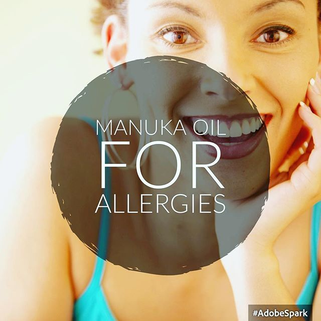 Manuka essential oil is one of the more recent entries into the aromatherapy collection but native New Zealanders have been aware of its extraordinary health benefits for centuries. The Maoris have long used various parts of the manuka tree to deal with a range of health complaints making use of its oil, sap, bark and leaves because of its remarkable antibacterial qualities. Visit https://theclassicthreads.sg/product/manuka-oil-mbtk-25-10ml/ for more information about Manuka Oil.