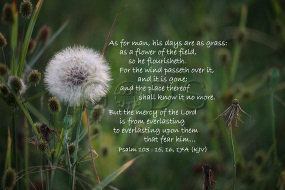 Psalm 103:151617A KJV Item 157 Scripture by GodsWordandWorld