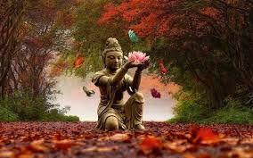 """"""" Confia na Vida. Tudo o que precisamos está aqui para nós"""". http://angelasilvestre.com/e/blog-receber-a-prosperidade"""