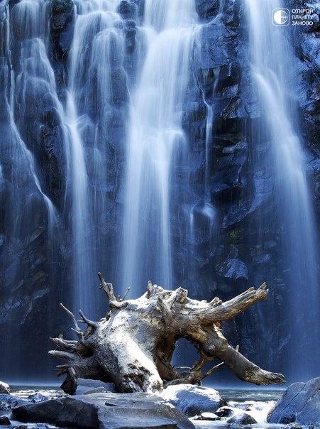 Красивый водопад Ellinjaa в тропическом лесу плато Атертон, Квинсленд, Австралия. Из-за неровного холмистого рельефа плато на всех речках района много порогов и водопадов.