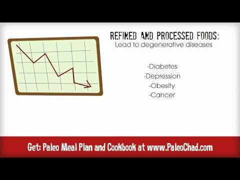 What is the Paleo Diet | Paleolithic Diet Basics for Beginners - YouTube
