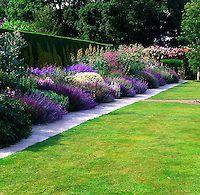longue bordure de vivaces dont des géraniums, sauges, nepetas, anthémis, macleaya cordata et phlox | PHILIPPE PERDEREAU Garden Images