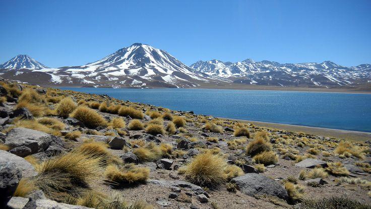 Laguna Miscanti, Región de Antofagasta. Foto de Eduardo Sanhueza Mendez.