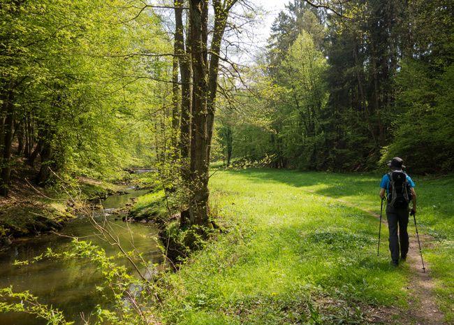 """""""Der Weg ist immer besser als die schönste Herberge."""" (Miguel de Cervantes) Wandern ist mobile Meditation Ich wandere für mein Leben gern. Beim Wandern bin ich der Natur so nah und kann ich mich so schnell entschleunigen wie bei keiner anderen Fortbewegungsart und Freizeitaktivität. Die landschaftlichen Reize und leisen Töne der Natur ersetzen die alltäglichen Reize wie Computer, Musik, Fe ..."""