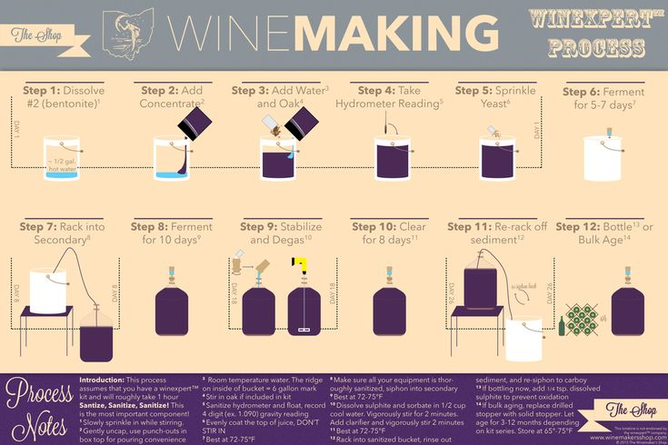 the process of wine making essay An explanation of how the wine making process works  vintage, in wine- making, is the process of picking grapes and creating the finished product a  vintage wine is one made from  custom essay writing service's gravatar.