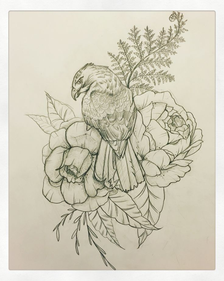 Hawk tattoo! Peony tattoo! Interested in custom drawings? Contact me at… (Cool Sketches Flowers)