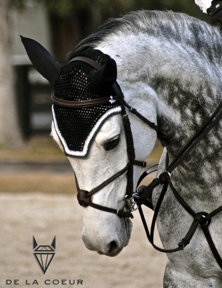 Fly Bonnet on a beautiful dapple grey jumper.   www.delacoeur.ca  https://www.facebook.com/DeLaCoeurEquestrian