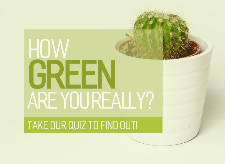 Shed some light on your green habits!