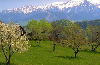 Beautiful View!!
