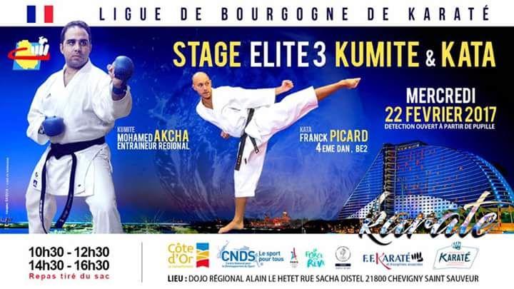 La ligue propose un stage au Dojo de Chevigny. Un stage Kumite et Kata.
